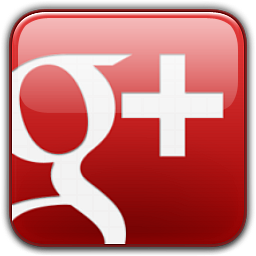 googlep_logo