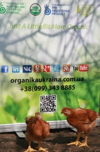 Organika Ukraina Chicken set 01  (19)