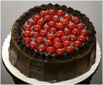 sintetik-tort